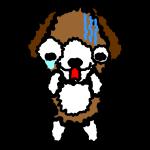 beagle-dog_fear