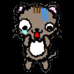 cat_fear-handwrittenstyle