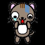 cat_shock-handwrittenstyle