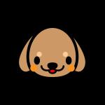 dachshund_face