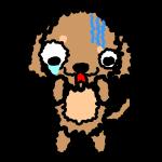 dachshund_fear