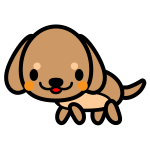 dachshund_side