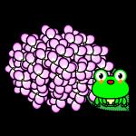 hydrangea_03-frog-pink01