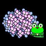 hydrangea_03-frog-pp01
