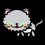 persian-cat_side