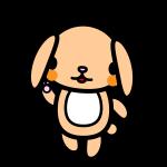 rabbit2_enjoy