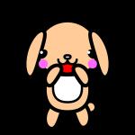 rabbit2_glad