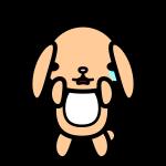 rabbit2_sad