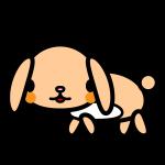 rabbit2_side