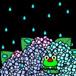 rainyseason_01-hydrangea-frog02