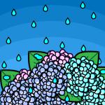 rainyseason_01-hydrangea01