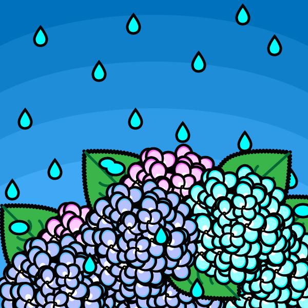 かわいいあじさいと梅雨の無料イラスト・商用フリー