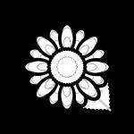 sunflower_02-blackwhite