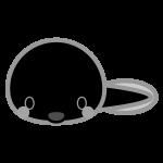 tadpole_01-monochrome