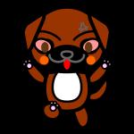 tosa-dog_angry