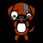 tosa-dog_shock