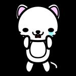 white-cat_sad