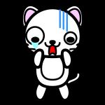 white-cat_shock