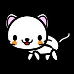 white-cat_side