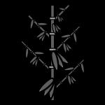 bamboo-grass_01-monochrome