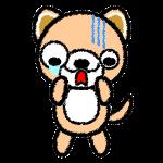 dog_shock-handwrittenstyle