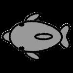 dolphin_01-upper-handwrittenstyle