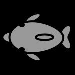 dolphin_01-upper-monochrome