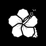 hibiscus_02-blackwhite