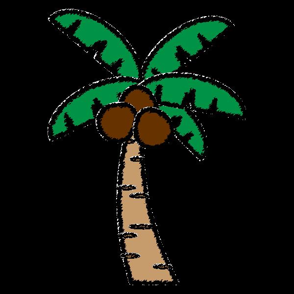 手書き風でかわいいヤシの木の無料イラスト・商用フリー
