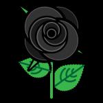 rose_01-black