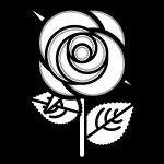 rose_01-blackwhite