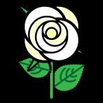 rose_01-white