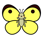 butterfly_colias