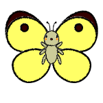 butterfly_colias-handwrittenstyle