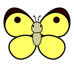 butterfly_colias-top