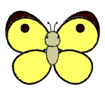 butterfly_colias-top-handwrittenstyle