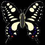 butterfly_swallowtail-top-handwrittenstyle