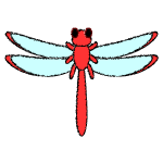 dragonfly_red-top-handwrittenstyle