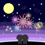 fireworks_display-couple
