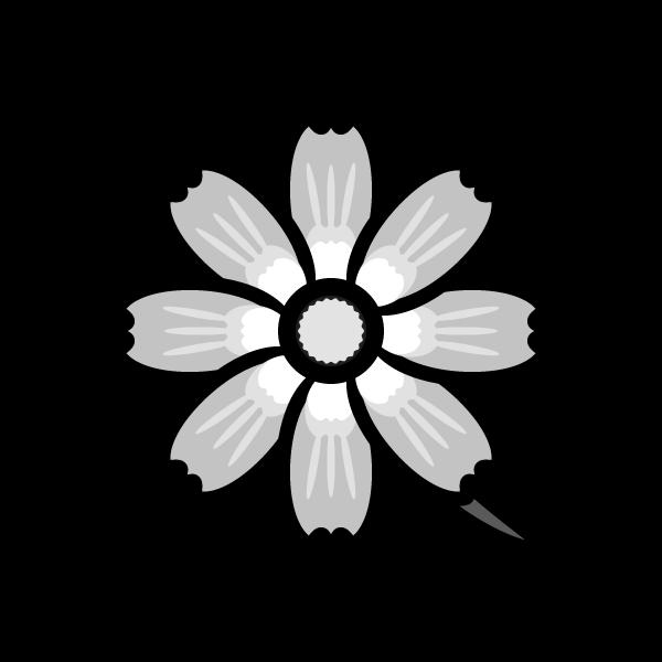 cosmos_02-monochrome