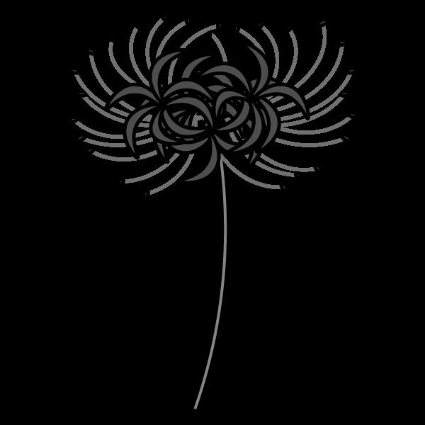 lycoris-radiata_01-monochrome