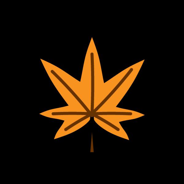 maple_orange