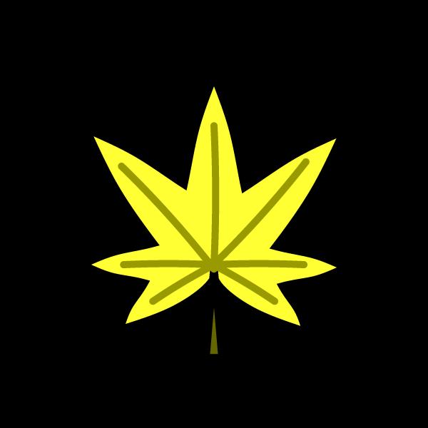 maple_yellow