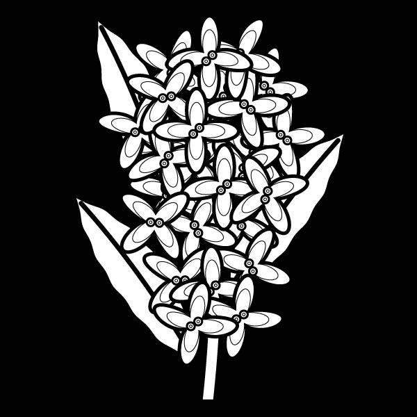 osmanthus-fragrans_01-blackwhite