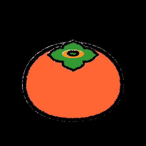 手書き風でかわいい柿の無料イラスト・商用フリー