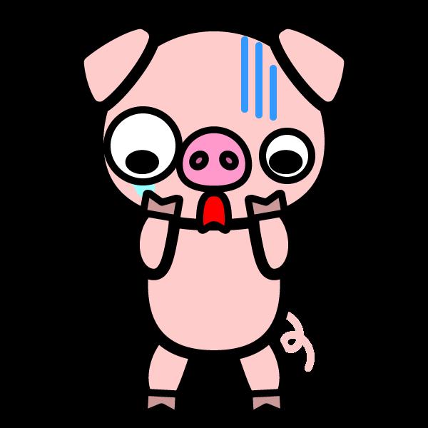 pig_shock