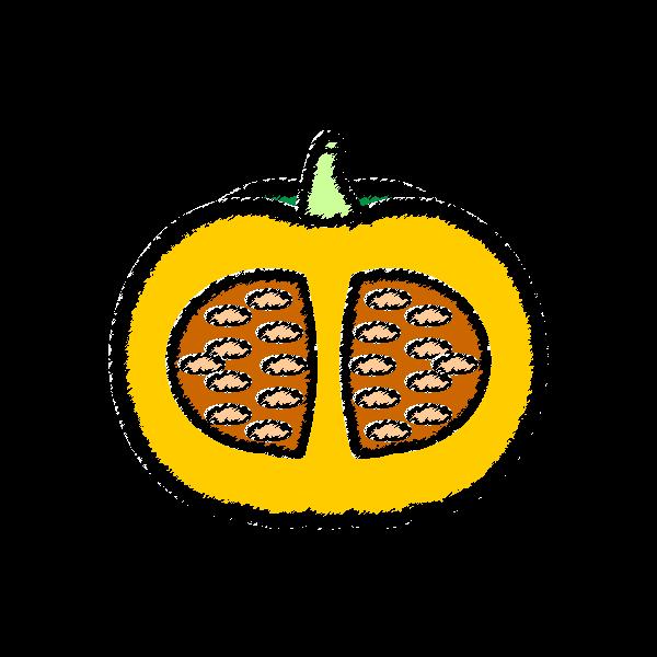手書き風でかわいい半分に切ったかぼちゃの無料イラスト・商用フリー