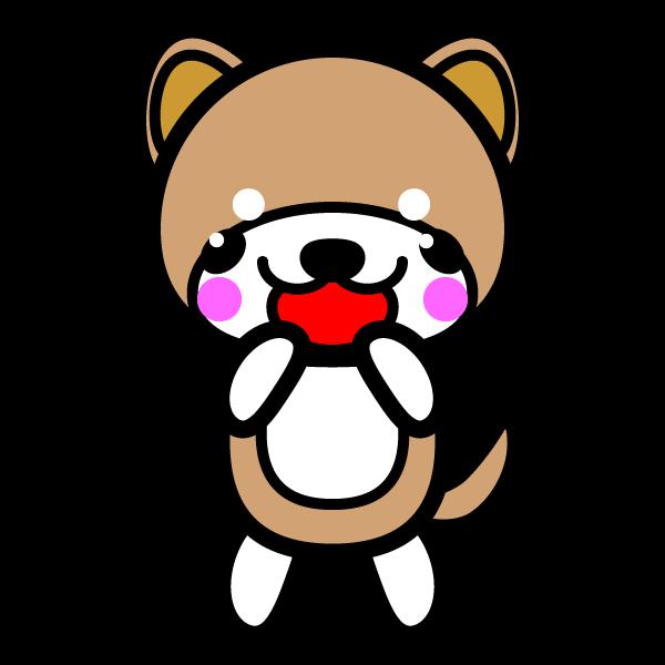 shiba-dog_glad