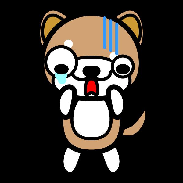 shiba-dog_shock