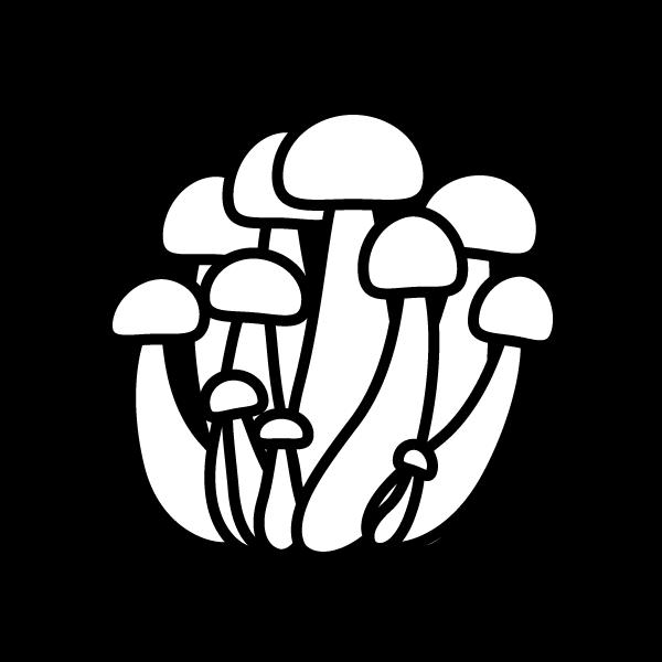 shimeji-mushroom_01-blackwhite